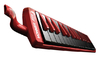 "Hohner Melodica ""Fire"""